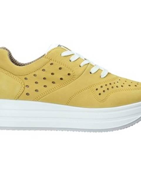 Žlté tenisky IGI CO