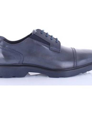 Modré topánky Hogan