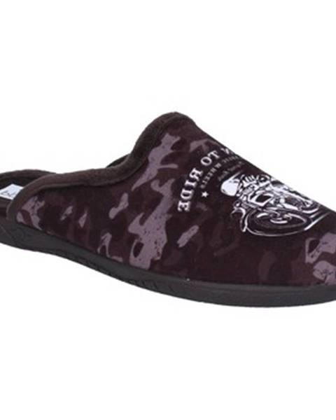 Hnedé papuče Pregunta