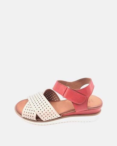 Červené topánky wild