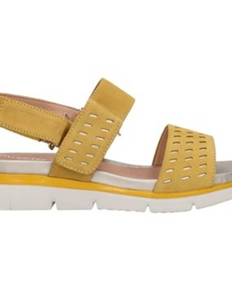 Žlté topánky Stonefly