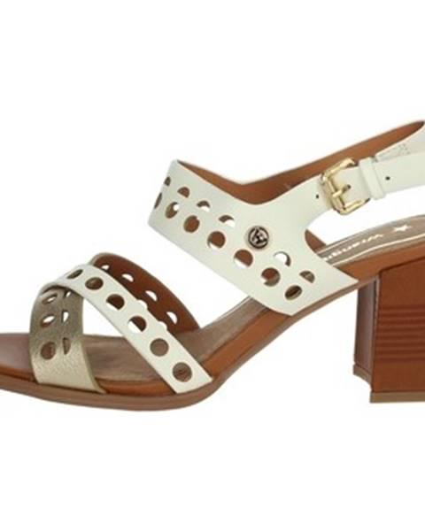 Viacfarebné topánky Wrangler